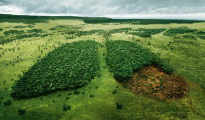 litsenziya-ekologiya